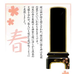 純面粉【かなで】桜